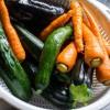 農業高卒が教える本当に栄養価の高いおすすめ野菜5選!